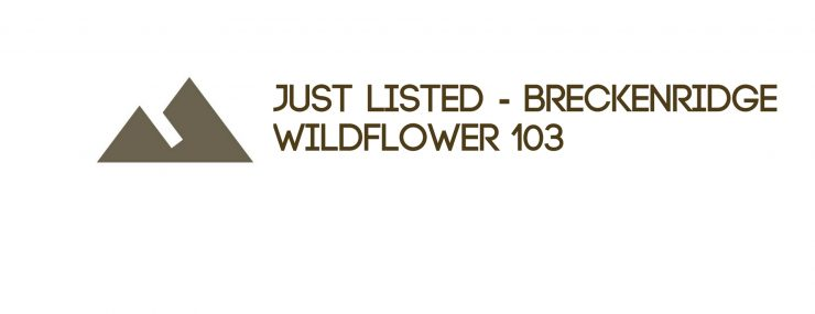 Just Listed - Residential Property in Breckenridge, CO: Wildflower 103